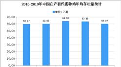 2020年中国蛋鸡行业存在问题及发展前景预测分析