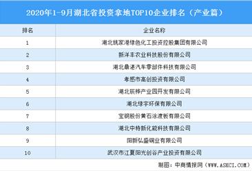 产业地产投资情报:2020年1-9月湖北省投资拿地TOP10企业排名(产业篇)