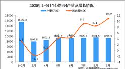 2020年1-9月中国粗钢产量数据统计分析