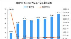 2020年9月青海省原盐产量数据统计分析