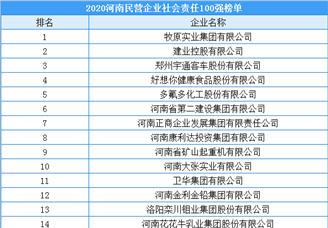 2020年河南省民营企业社会责任100强排行榜