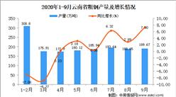 2020年9月云南省粗钢产量数据统计分析