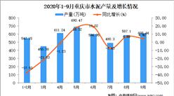2020年9月重庆市水泥产量数据统计分析