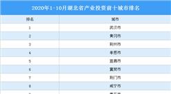 2020年1-10月湖北省产业投资前十城市排名(产业篇)