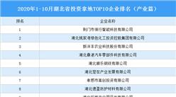 产业地产投资情报:2020年1-10月湖北省投资拿地TOP10企业排名(产业篇)
