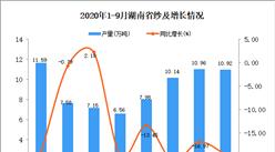 2020年9月湖南省纱产量数据统计分析