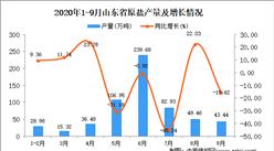 2020年9月山东省原盐产量数据统计分析