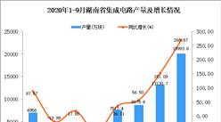 2020年9月湖南省集成电路产量数据统计分析