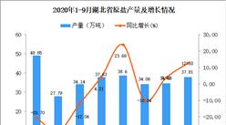 2020年9月湖北省原盐产量数据统计分析