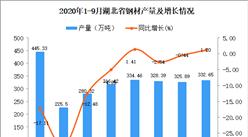 2020年9月湖北省钢材产量数据统计分析