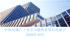 2020年10月中国房地产行业经济运行月度报告(完整版)
