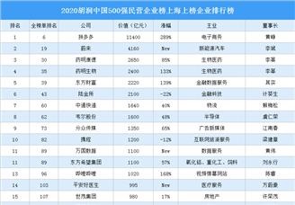 2020胡潤中國500強民營企業榜上海上榜企業排行榜(附榜單)