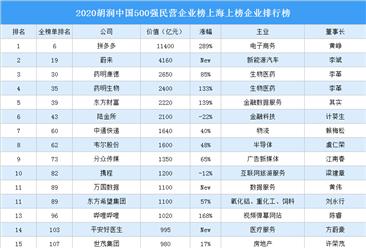 2020胡润中国500强民营企业榜上海上榜企业排行榜(附榜单)