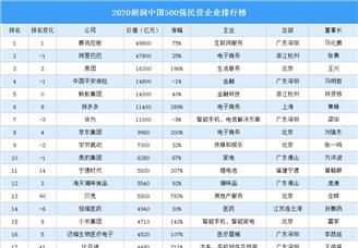 2020胡润中国500强民营企业排行榜(附完整榜单)