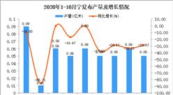 2020年10月宁夏布产量数据统计分析