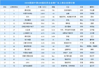 2020胡润中国500强民营企业榜广东上榜企业排行榜(附榜单)