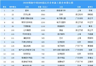 2020胡润中国500强民营企业新上榜企业排行榜(附榜单)