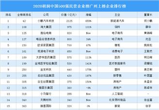 2020胡润中国500强民营企业榜广州上榜企业排行榜(附榜单)