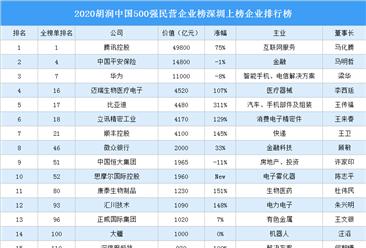 2020胡润中国500强民营企业榜深圳上榜企业排行榜(附榜单)