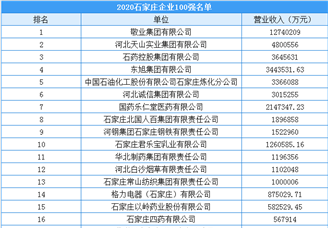 2020年石家庄市100强企业排行榜(附榜单)