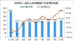 2020年10月云南省粗钢产量数据统计分析