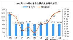 2020年10月山东省生铁数据统计分析