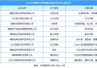 2020年湖南省互联网最具成长企业10强排行榜