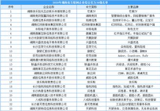 2020湖南省互联网综合实力30强企业排行榜(附榜单)