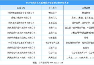 2020年湖南省互联网创新型企业10强排行榜