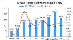 2020年10月湖北省微型计算机设备产量数据统计分析