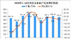 2020年10月重庆市水泥产量数据统计分析