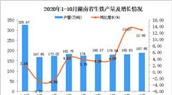 2020年10月湖南省生铁产量数据统计分析