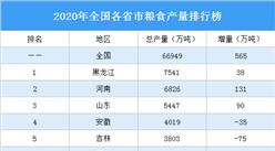 2020年全国31省市粮食产量排行榜:16省市粮食增产超10万吨(图)