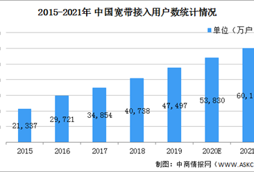 2021年中国专用网络服务行业市场现状及发展前景分析(图)