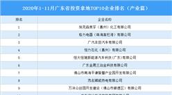 产业地产投资情报:2020年1-11月广东省投资拿地TOP10企业排名(产业篇)