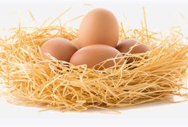 2021年2月禽蛋市场供需及价格预测分析:后期鸡蛋价格将震荡走低