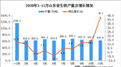 2020年11月山东省生铁产量数据统计分析