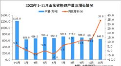 2020年11月山东省粗钢产量数据统计分析