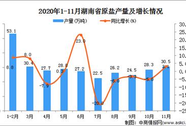 2020年11月湖南省原盐产量数据统计分析