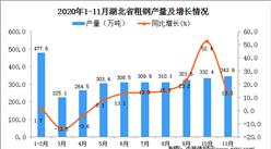 2020年11月湖北省粗钢产量数据统计分析
