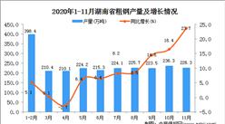 2020年11月湖南省粗钢产量数据统计分析