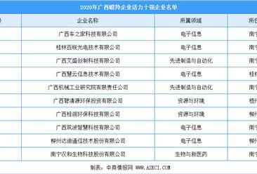 2020年广西瞪羚企业活力10强排行榜
