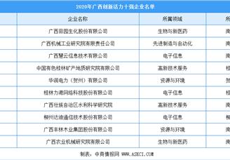 2020年广西高新技术企业创新活力10强排行榜
