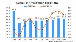 2020年11月广东省粗钢产量数据统计分析