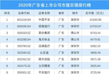 2020年广东省上市公司市值百强排行榜