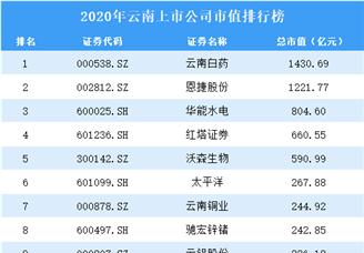 2020年云南上市公司市值排行榜(附全榜单)