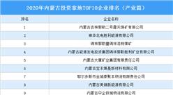 产业地产投资情报:2020年内蒙古投资拿地TOP10企业排名(产业篇)