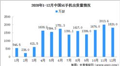 2020年1-12月全国5G手机市场分析:出货量1.63亿部 新机型218款(图)