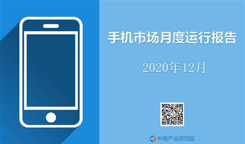 2020年中国手机市场月度运行报告(完整版)