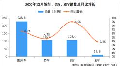 2020年1-12月中國乘用車銷量1928.8萬輛 同比下滑6.8%(附車型銷量)